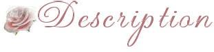 bridedescription